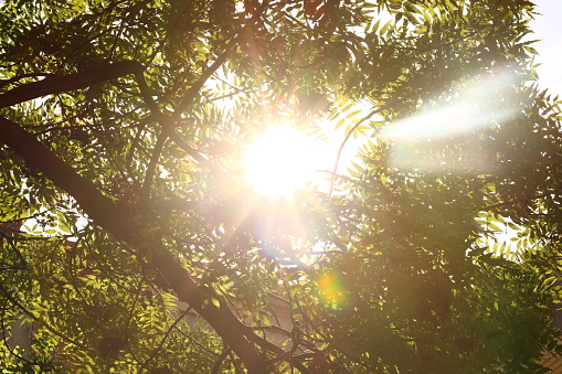 vrijeme, sunce