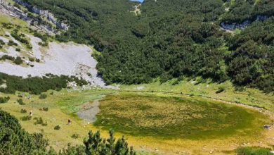 Photo of Lokvanjsko jezero, ukras Bjelašnice, nestaje pod barskim biljem